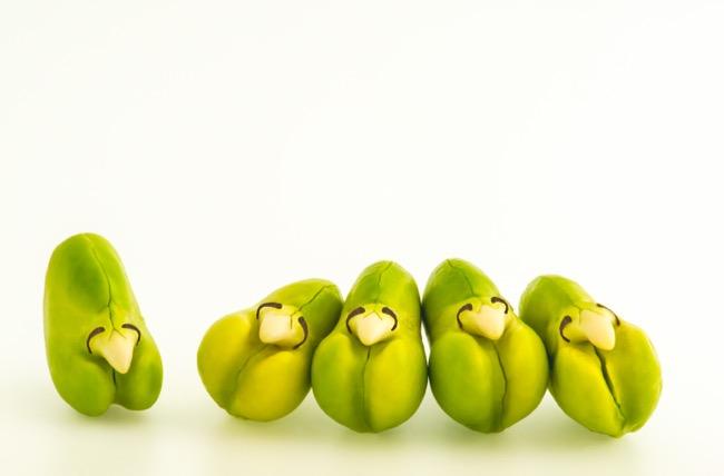 Five Fava Beans